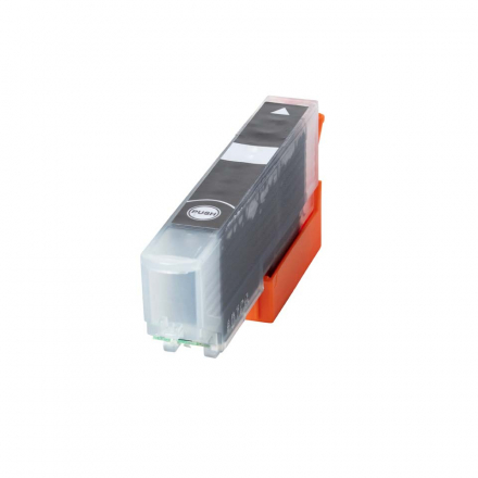 Cartouche EPSON 33 XL - Noir Photo compatible